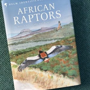 African Raptors Plates