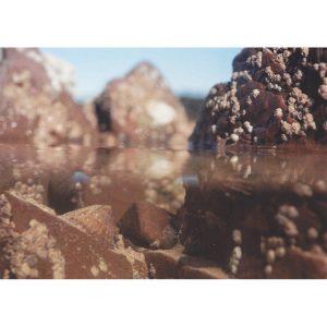 Rock Pool Postcard